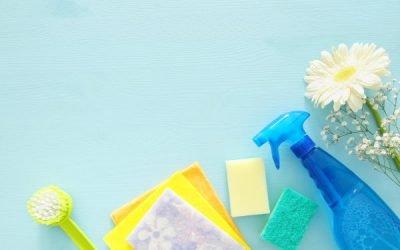 SPRING CLEANING: INFORMER 4